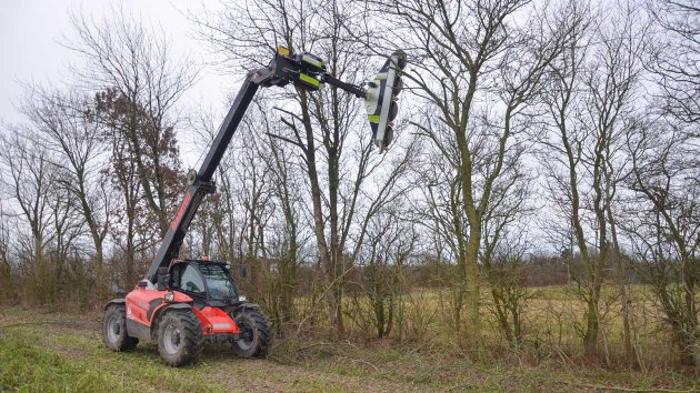 Tree trimming with telescopic loader